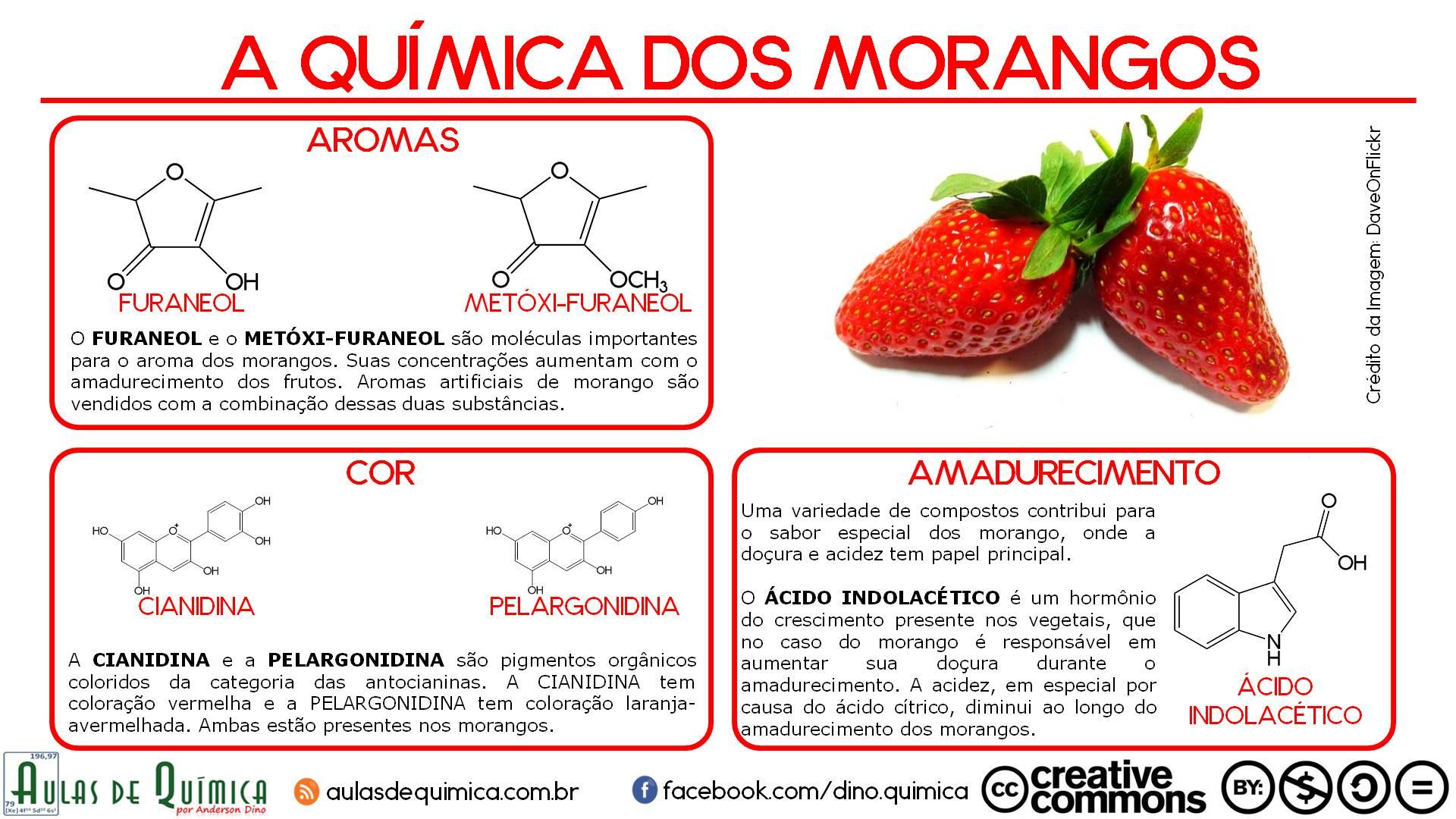 a_quimica_dos_morangos