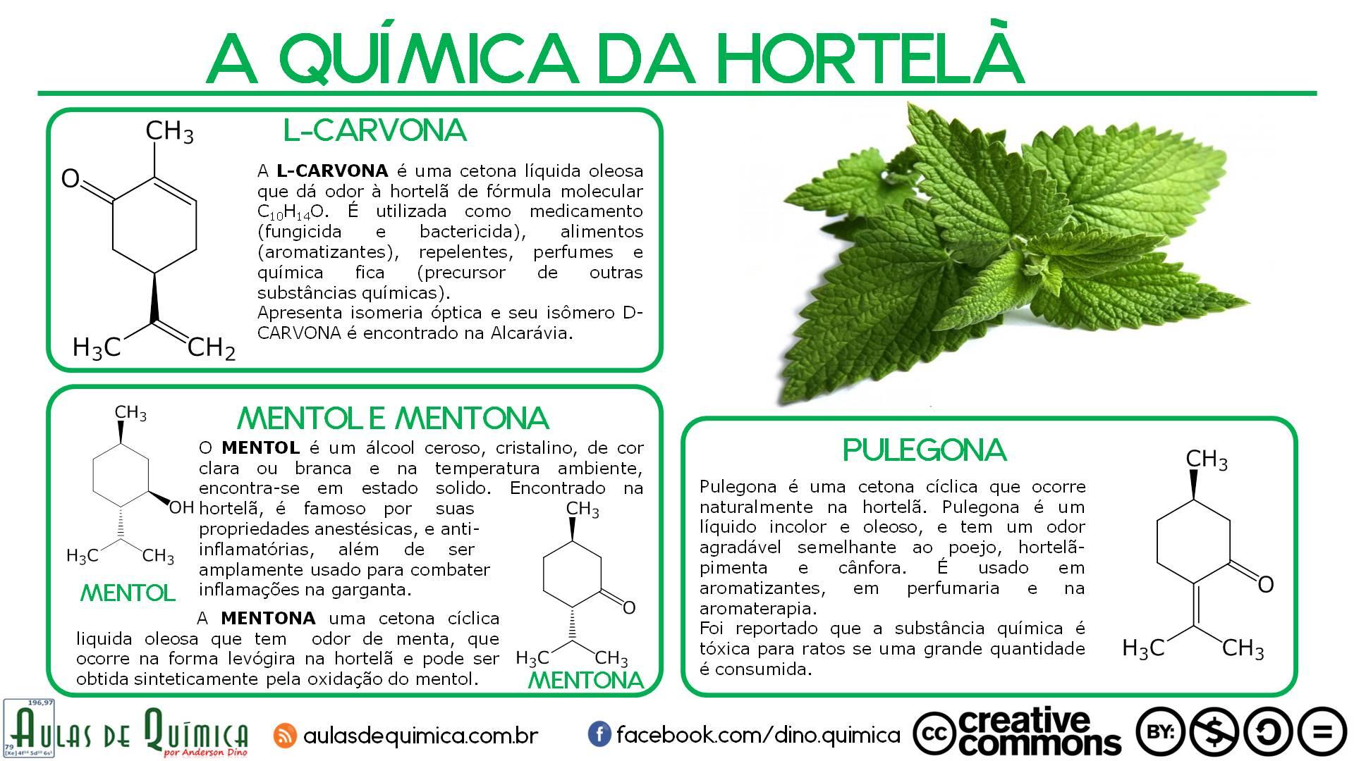 a_quimica_da_hortela